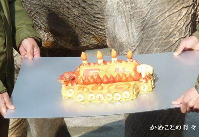 P1130290-cake.jpg