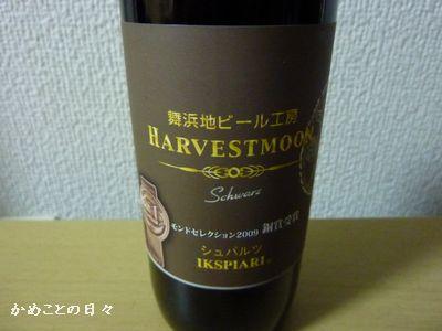 P1140103-beer.jpg