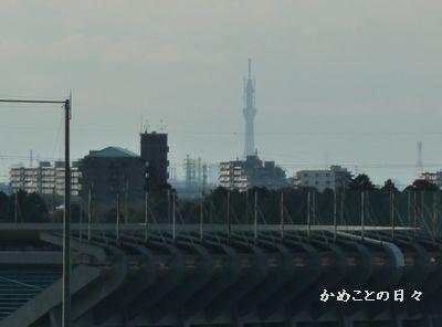 P1140552-sky.jpg