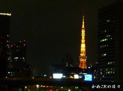 P1140932-tokyo.jpg