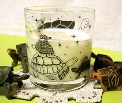 陸亀ロックグラス