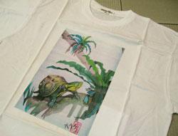 背丸箱亀Tシャツ