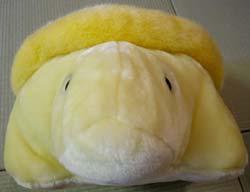 ポンポン亀