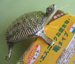エスニックな亀