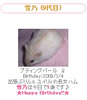 yukino 2010y03m04d_121902000