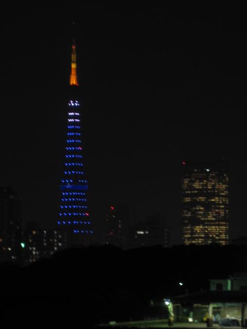 夜の東京タワー 勝どきから