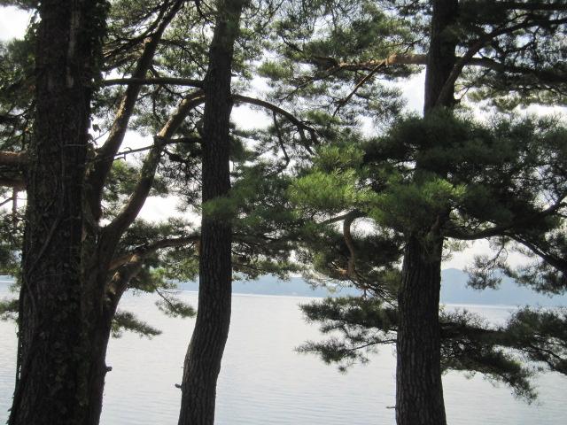 田沢湖 僕ビョンホン