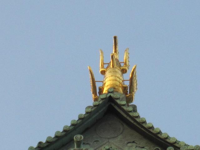 名古屋城の鯱鉾のお腹だぎゃー