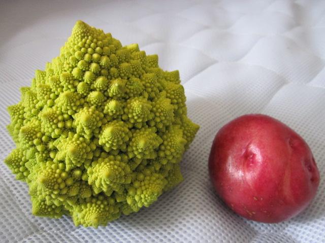 さんご礁花野菜&アンデス赤