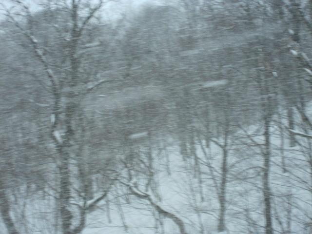 玉川 吹雪です