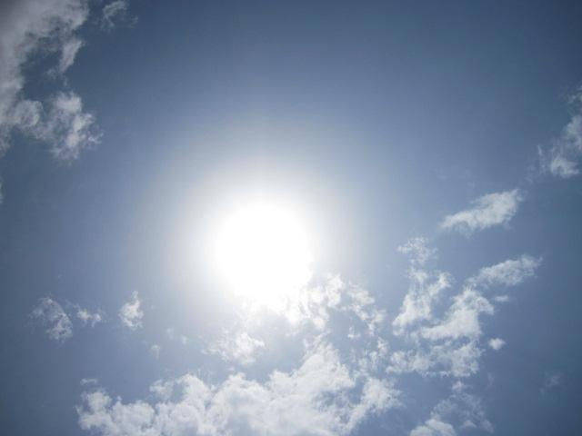 ぎらぎら太陽