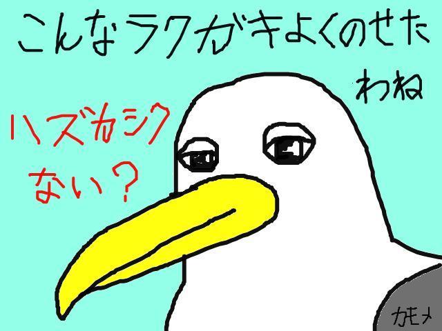 snap_kamomesenpai_201033171717.jpg