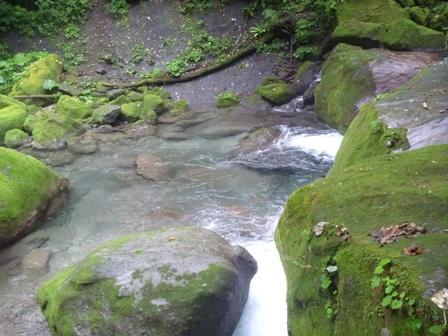 社台川の水