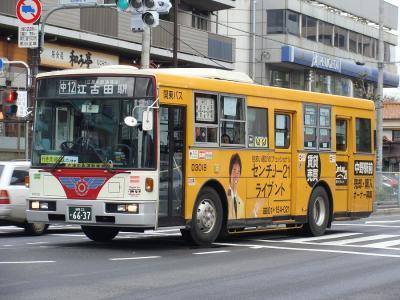 DSC00254.jpg