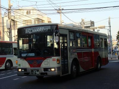 DSC03034.jpg