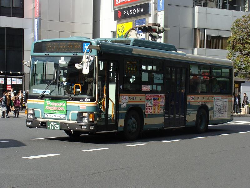 DSC08653-3.jpg