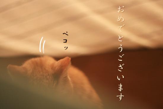 20100101_rui_002.jpg