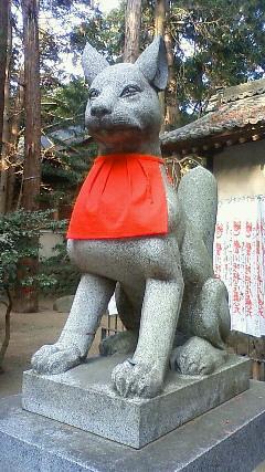 犬みたいな狐