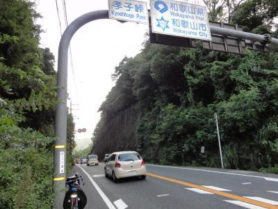 孝子峠08214