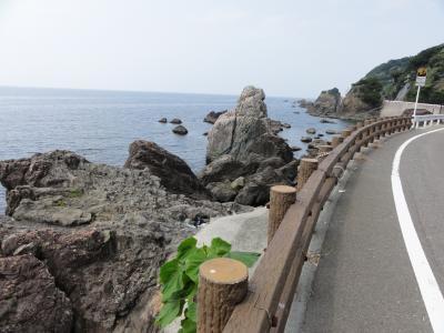 県道20野井峠付近08223