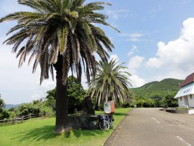 日本童謡の園08243