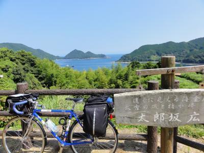 太郎坂から楯ケ崎を望む08254