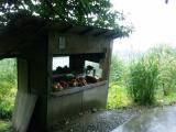リンゴ直売所は秋の実り