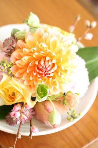 20120211生花