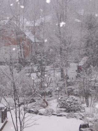 H220201雪降り