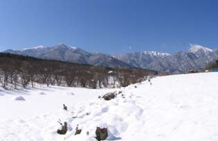 H220311雪のアルプス