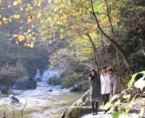 H221101精進ヶ滝