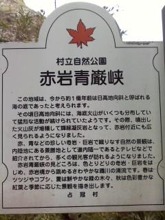 P2013_1008_104611.jpg