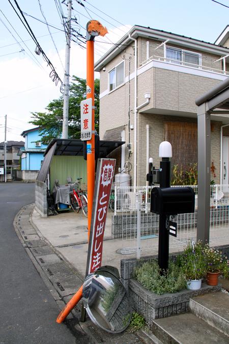 13-20100605b.jpg