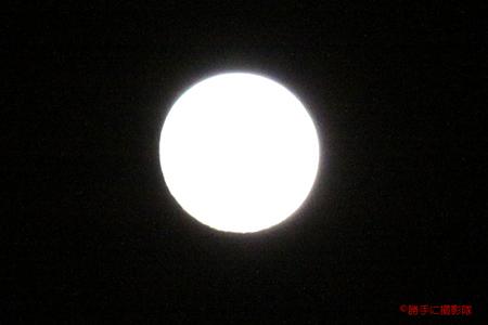 25-20101120d.jpg