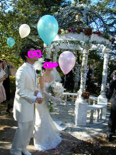 T  Y Wedding20100124_11