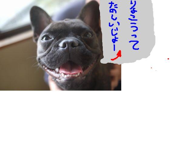 snap_kayo0316_201055205047.jpg