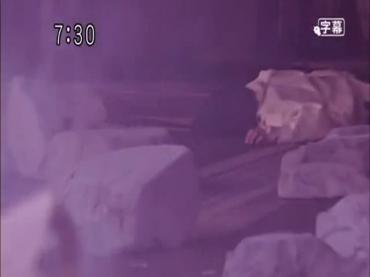 Samurai Sentai Shinkenger Act 43 1.avi_000042742