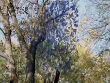 Samurai Sentai Shinkenger Act 44 2.avi_000365698