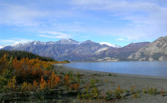 Yukon 9 030