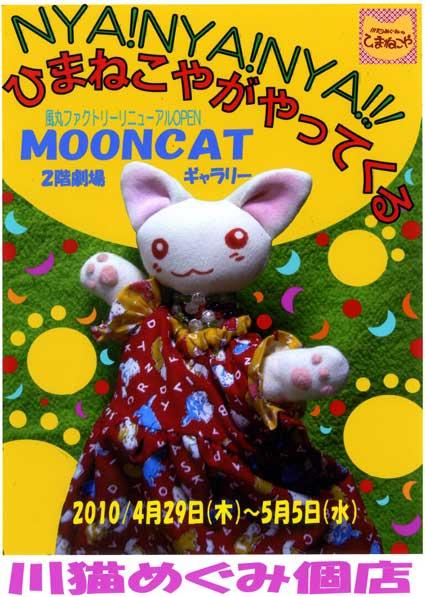 2010川猫個店DM画像