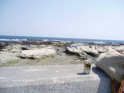 防波堤からの海