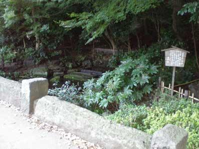 井の頭湧水地