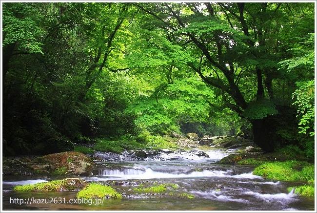 菊池渓谷 広河原 (2)