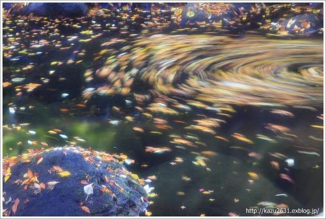 菊池渓谷 木の葉の舞 (3)