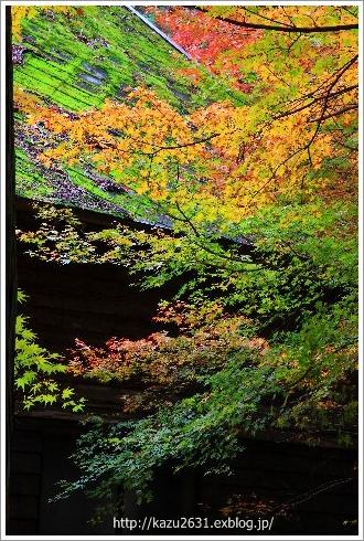 佐賀 仁比山神社 (1)