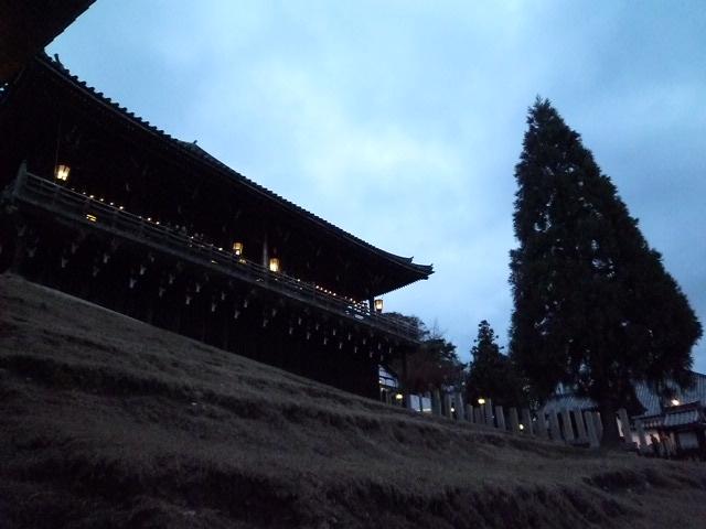 国宝 東大寺二月堂と良弁杉