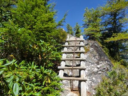 白岩山手前の梯子