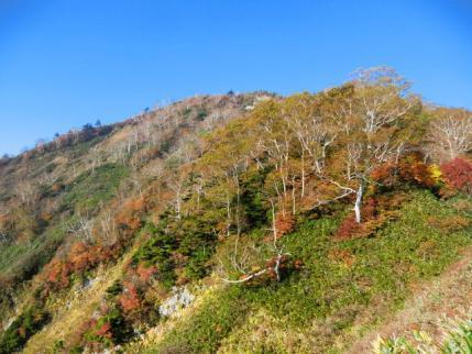 新道からの五地蔵山