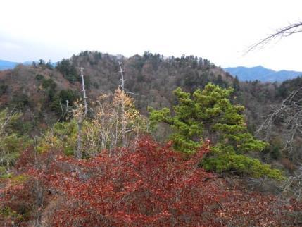 三笠山から諏訪山