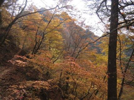 三笠山を振りかえる